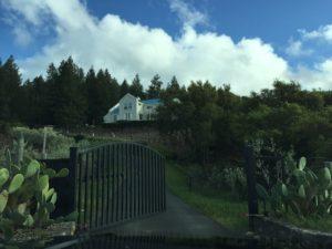 mueller-family-vineyards-home-diamond-mountain-napa-valley